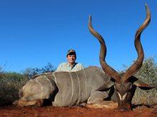 Kudu trophy